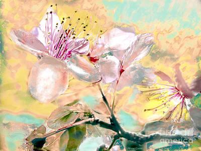 Photograph - Flores De Primavera by Alfonso Garcia