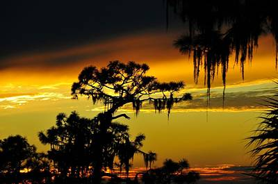 Weathered Photograph - Central Florida Sunset by David Lee Thompson