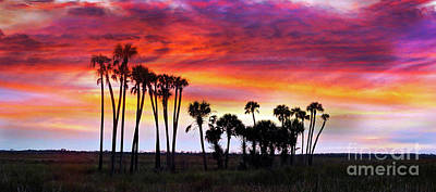Photograph - Florida Sunset by Judi Bagwell