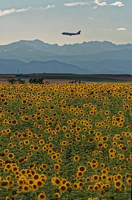 Photograph - Flower Landing by Richard Keer