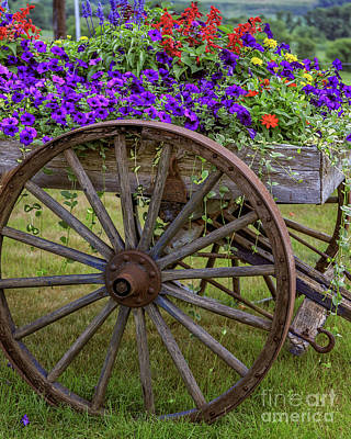 Annual Photograph - Flower Wagon by Edward Fielding