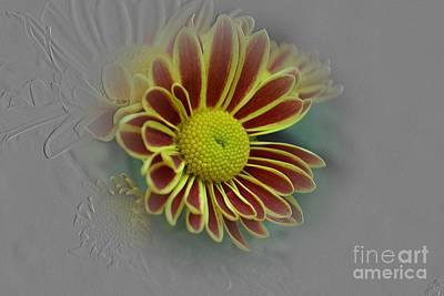Stamen Digital Art - Flowers by Ahmed Nooh
