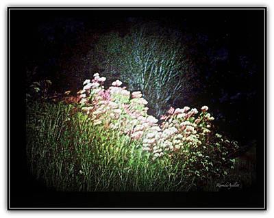 Mixed Media - Flowers At Night by YoMamaBird Rhonda