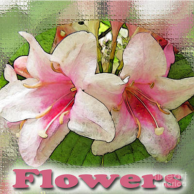 Photograph - Flowers Logo by Debbie Portwood