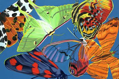 Flutter Original