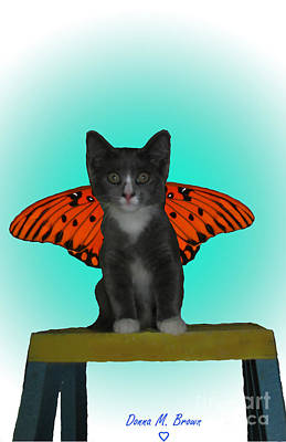Donna Brown Photograph - Flying Kitty by Donna Brown