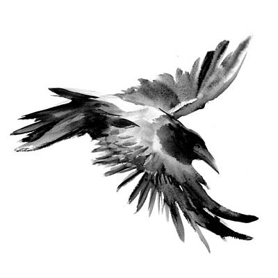 Crow Drawing - Flying Raven by Suren Nersisyan