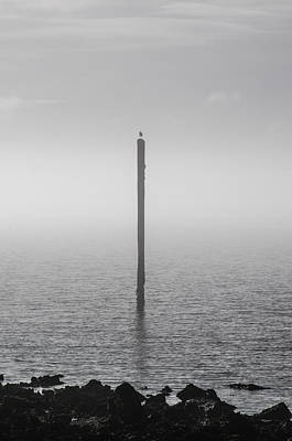 Photograph - Fog On The Cape Fear River by Willard Killough III