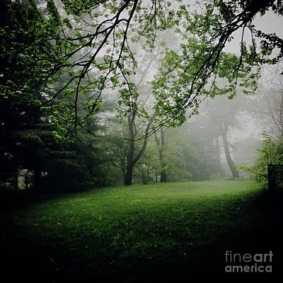 Frank J Casella Royalty-Free and Rights-Managed Images - Fog on the Green by Frank J Casella