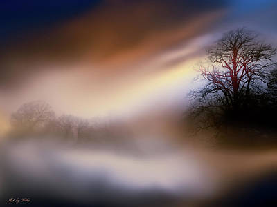 Photograph - Foggy Landscape 2 by Lilia D