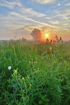 Photograph - Foggy Sunrise Along Nippersink Creek In Glacial Park by Ray Mathis