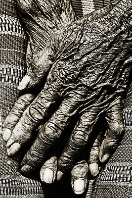 Old Hands Print by Skip Nall