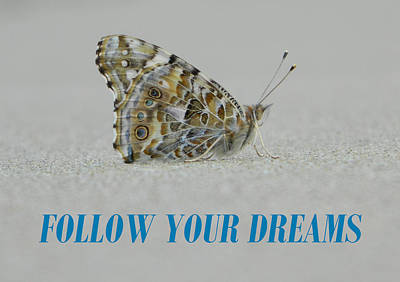 Anti-bullying Photograph - Follow Your Dreams by Gallery Of Hope