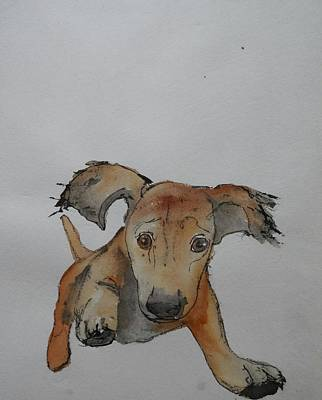 Painting - For Love Of A Dog Album by Debbi Saccomanno Chan