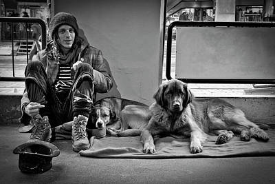 Photograph - For The Love Of Dog by Sonny Marcyan
