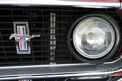 Photograph - Ford Mustang   by Pamela Walrath