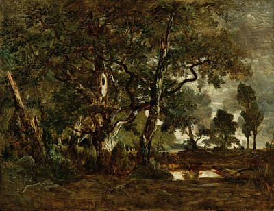 Realism Painting - Forest Of Fontainebleau by Theodore Rousseau
