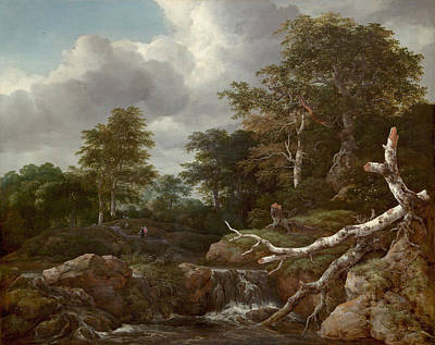 Holland Painting - Forest Scene by Jacob van Ruisdael