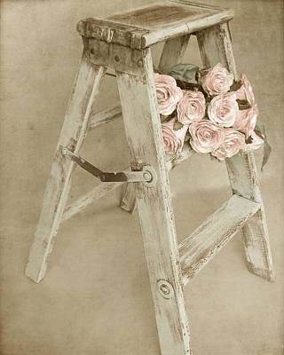 Step Stool Photograph - Forget Me Not by Angie Mahoney