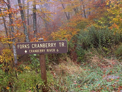 Forks Of Cranberry Trail Art Print by Thomas R Fletcher