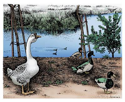 Pointillist Drawing - Foul At Paddon Lock by Joseph Juvenal