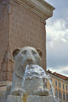 Photograph - Fountain Lion by JAMART Photography