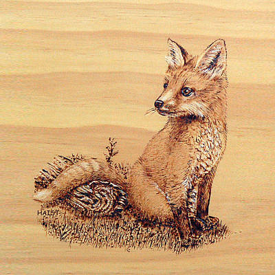 Pyrography - Fox by Ron Haist