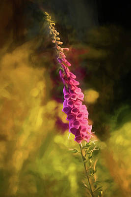 Painting - Foxglove by Bonnie Bruno