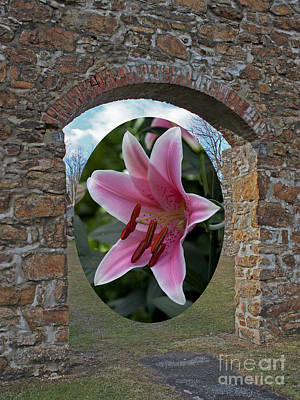 Framed In Stone Art Print by Robert Sander