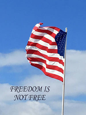 Veterans Day Mixed Media - Freedom Is Not Free by Monique Neugebauer