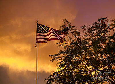 Fluttering Photograph - Freedom by Robert Bales