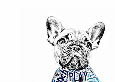 Pets Art Mixed Media - French Bulldog Portrait by Marvin Blaine