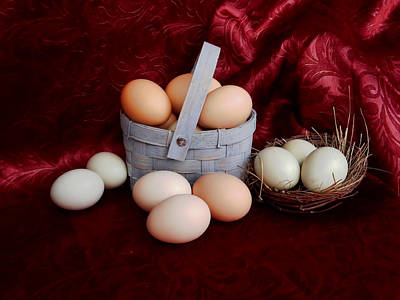Photograph - Fresh Eggs by Pamela Walton