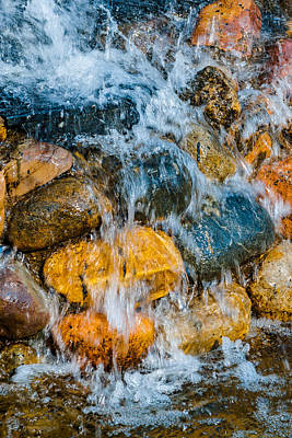 Photograph - Fresh Water by Alexander Senin