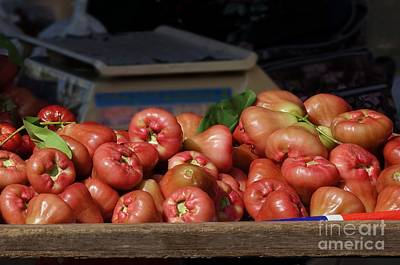 Photograph - Fresh Wax Apples Or Bell Fruits by Yali Shi