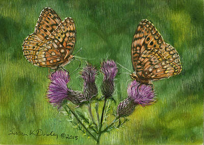 Drawing - Fritillary Butterflies On Thistle by Susan Donley
