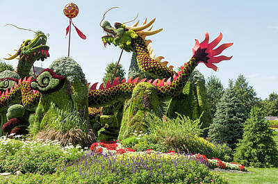 Gatineau Park Photograph - From Beijing Is  Blessing Of The Good Omen Dragons 6 by Bob Corson