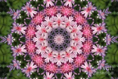 Digital Art - Frosted Double Pink Mandala by J McCombie