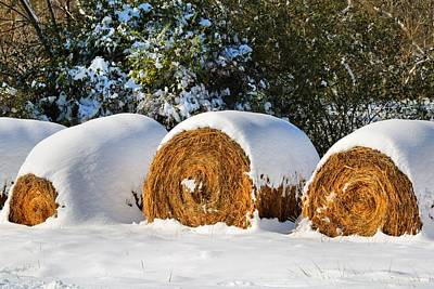 Photograph - Frosted Shredded Wheat by Kathryn Meyer