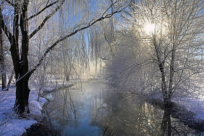 Photograph - Frosty Morn 3 by Dan Myers
