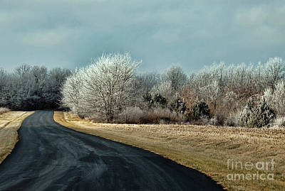 Photograph - Frosty Morn by David Arment