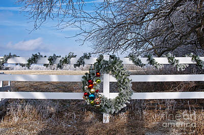 Photograph - Frosty Wreath by David Arment