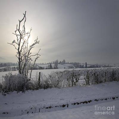 Frozen Britain Art Print by Angel Ciesniarska