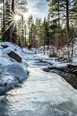 Photograph - Frozen Creek by Maria Coulson
