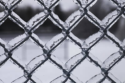 Photograph - Frozen Fence by Bryan Davies
