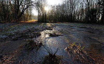Photograph - Frozen Pond by David Harding