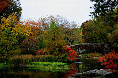Photograph - Gapstow Bridge In Fall by Christopher Kirby