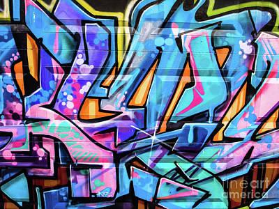Photograph - Garage Door by Derek Selander