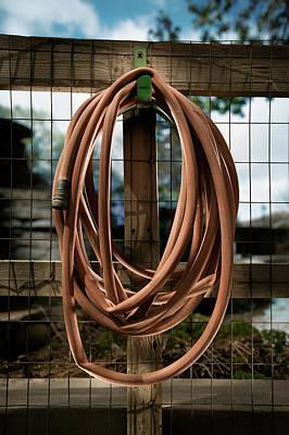 Coils Photograph - Garden Hose by Yo Pedro