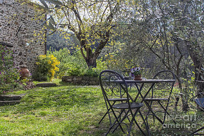 Photograph - Garden In Spring by Patricia Hofmeester